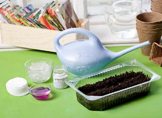 Семена однолетников можно использовать и собранные с цветущих на участке растений, и купленные в магазине – их происхождение в этом вопросе не принципиально