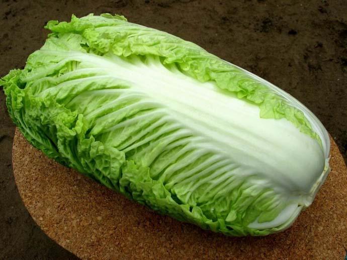 Полезные свойства и рецепты приготовления этой овощной культуры хорошо известны многим отечественным потребителям пекинской капусты