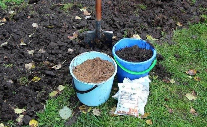 Существуют уже готовые органические комплексы, предназначенные для внесения на приусадебных и садово-огородных участках под посадку овощных культур, включая картофель