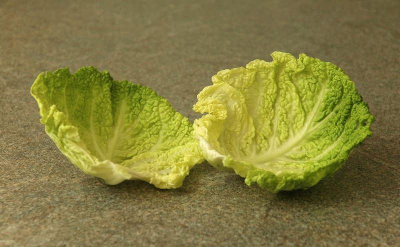 Курчавыми листьями нередко используют для растительного декора