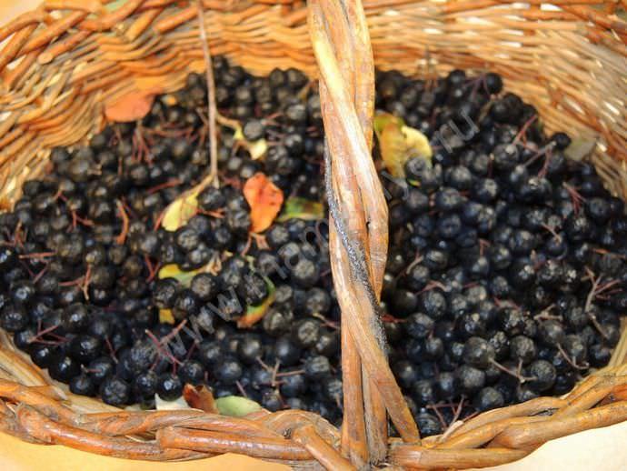 Заготовка из этих ягод отменно хранится и готовится просто