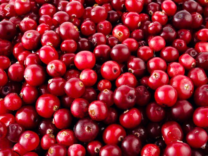 Для того чтобы польза этих ягод сохранилась даже при их консервировании, зачастую их вообще не подвергают отвариванию