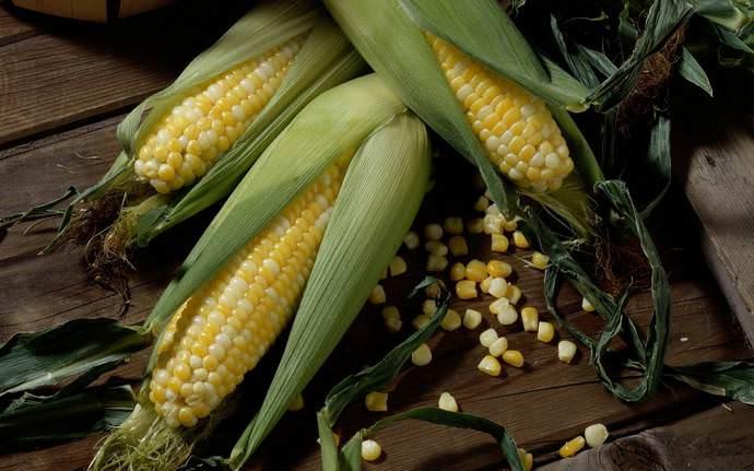 Употреблять початки кукурузы в пищу можно практически всем