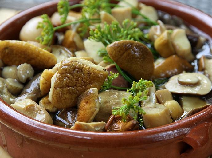 Большинство рецептов консервирования любых грибов предполагает обязательную стерилизацию