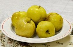 Самый популярный, общедоступный и любимый всеми фрукт, который можно встретить растущим везде — на даче, в деревне и даже в городе — это, безусловно, яблоко