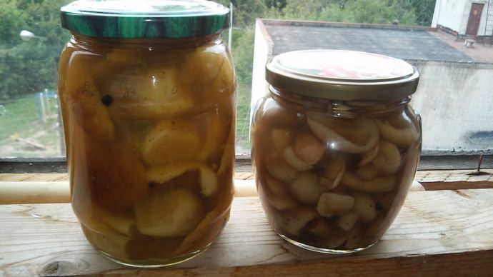 Многие в поиске самого простого рецепта для маринования грибов