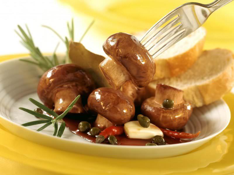 Маслята – одни из наиболее популярных съедобных грибов