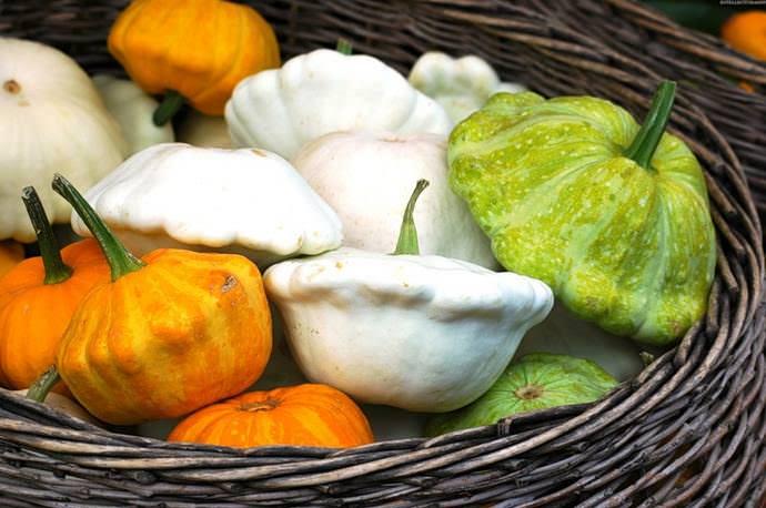Наиболее востребованы сорта и гибридные формы с плодами белого, желтого и зеленого цветов