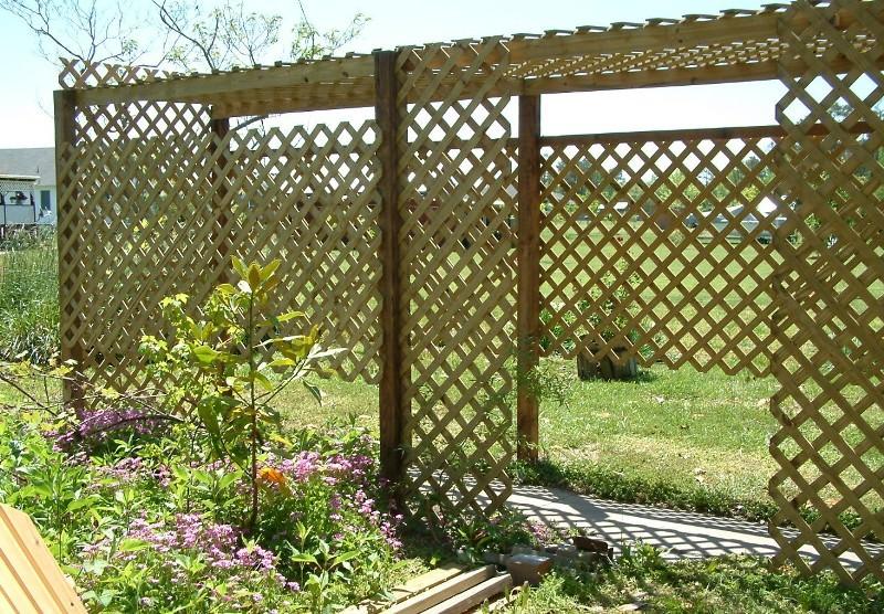 Красивая и прочная пергола для винограда станет отличным дополнением любого загородного дома