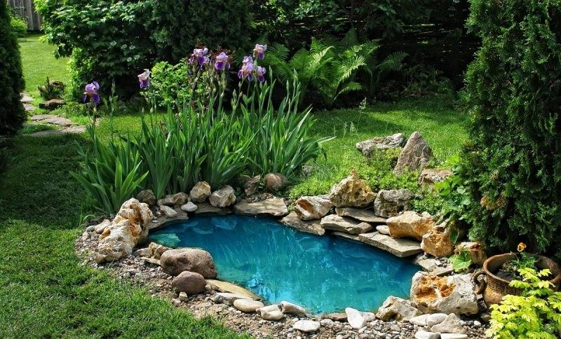 Чтобы искусственный водоем стал настоящим украшением дачного или приусадебного участка, необходимо учесть массу важных моментов