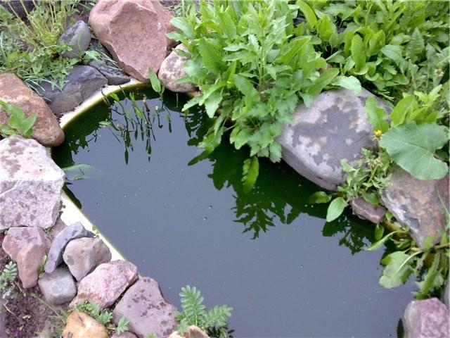 Подобный декоративный водоем можно обустроить самостоятельно, применяя подручные материалы
