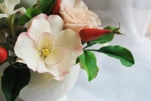 Достаточно часто роза перерождается в шиповник