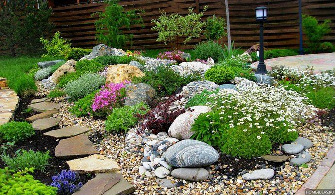 Сочетаться растения должны не только по внешности, но и по темпам роста, условиям ухода и ритму цветения