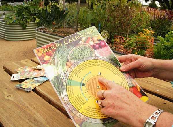 Уже начиная с декабря, садоводы активно изучают лунные посевные календари 2018 года