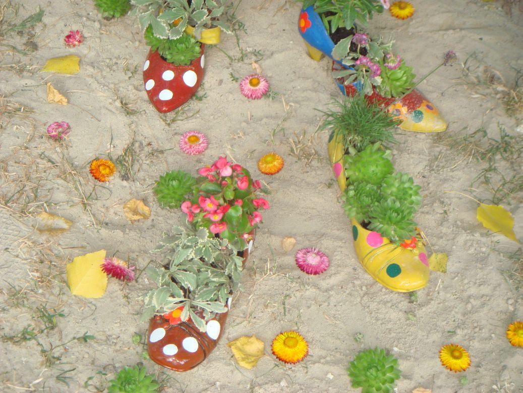 В ботинки и туфли можно высадить низкорослые экземпляры: маргаритки, анютины глазки, петунию, бегонию, бархатцы – это хорошо цветущие растения