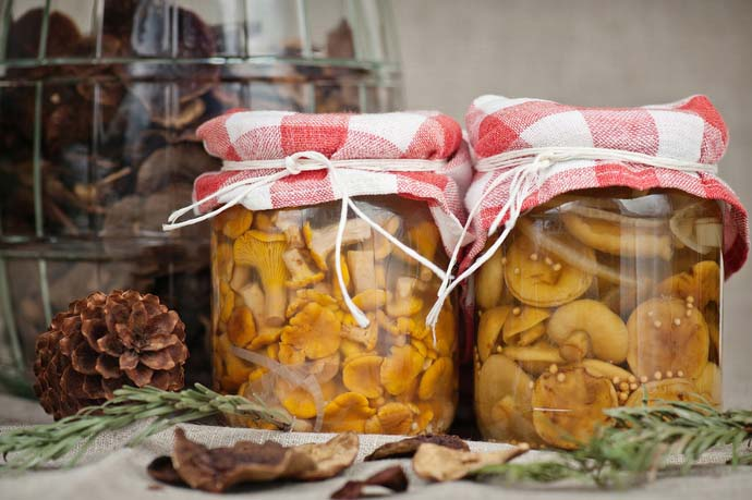 Солёные грибы – невероятно вкусный и очень питательный продукт