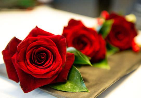 Голландская роза очень популярная в нашей стране и за рубежом