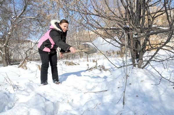 В январе уличные работы включают удаление снега с ветвей