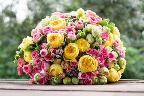 Пионовидные розы ценятся цветоводами за неприхотливость