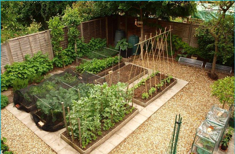 Такие сооружения относятся к теплым системам и позволяют получить более ранний урожай