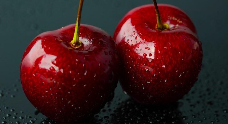 Вишня от А до Я: от выбора сорта до защиты от болезней