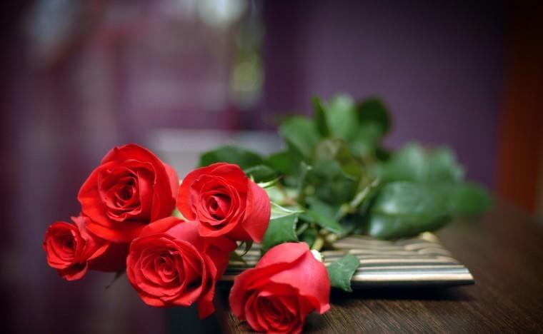 Роза красная лучшие сорта