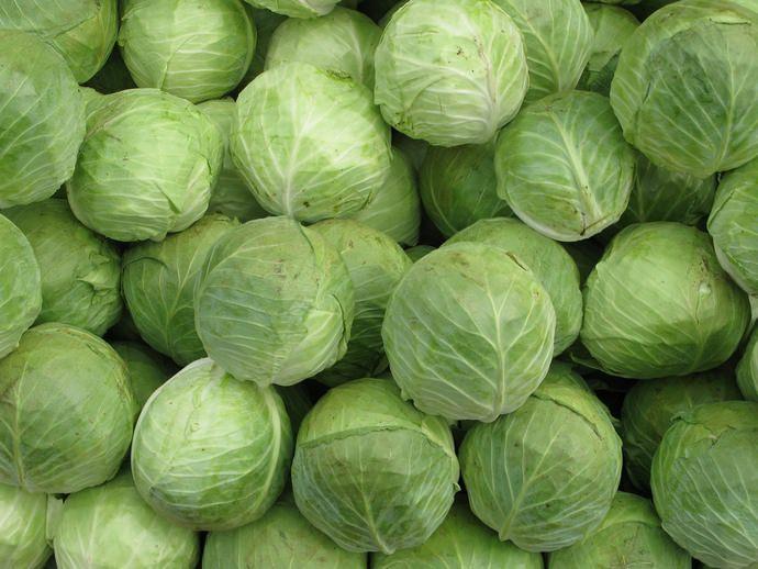 Соления рекомендуется делать из поздних сортов капусты