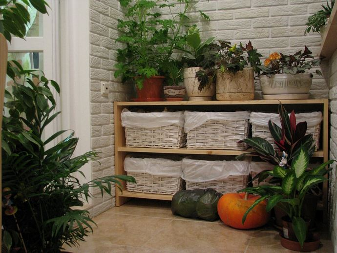 Овощная продукция достаточно хорошо хранится на балконе или лоджии с остеклением