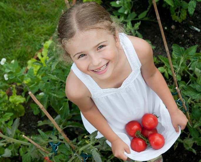 Если ребенок здоров, то в его рацион можно вводить томаты