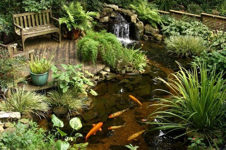 Декоративный водоём позволит перенестись в уголок дикой природы, отдохнуть не только телом, но и душой