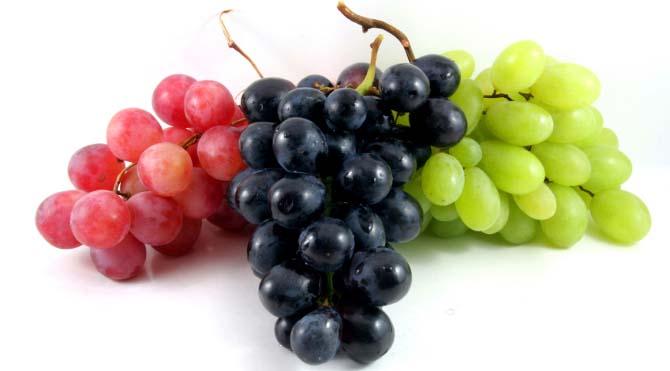 Польза винограда очевидна – в ягодах содержится большое количество минеральных веществ и микроэлементов