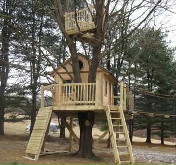 Как может выглядеть домик на дереве: пример готового сооружения