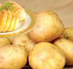 Картофель «Реванш» востребован для многоцелевого применения