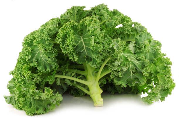 Капуста «Кале» является однолетним овощным растением