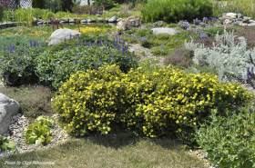 Создаем сад в природном стиле!