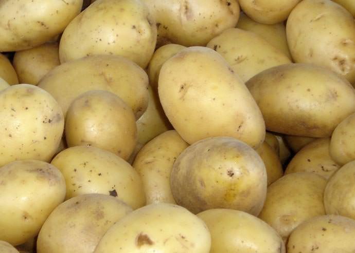 Картофель «Миранда» обладает отличными вкусовыми показателями и высокими товарными качествами