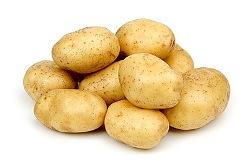 Картофель «Ассоль» относится к категории ранних сортов
