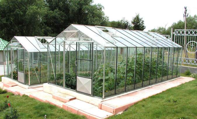 Чаще всего для выращивания овощной продукции круглый год используются тепличные или парниковые сооружения на основе светопрозрачного поликарбоната