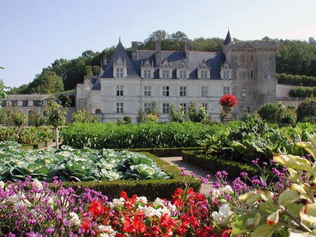 По периметру сада лучше всего разместить плодовые кустарники и растения. Они защитят французскую грядку от холодных ветров