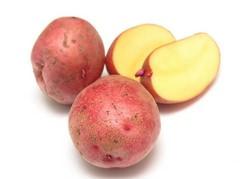 Картофель «Розалинд» пользуется популярностью у огородников