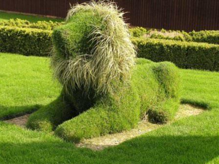 Не знаете, как еще декорировать газон? Используйте эксклюзивные идеи и даже топиарии