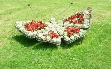 Эксклюзивные газоны и оригинальный декор травянистых площадок — это реальность!