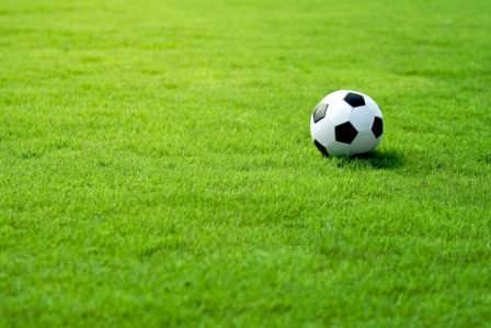 Если площадь газона позволяет, его всегда можно пустить под спортивную площадку или небольшой стадион
