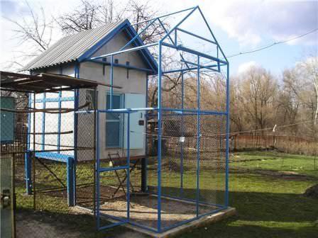 Многие требования дому для голубей определяются их породой