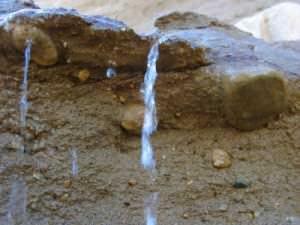 Ищем уровень грунтовых вод на территории своего участка