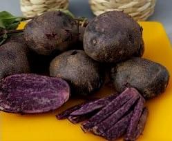 Картофель «Гурман» является достаточно популярным сортом