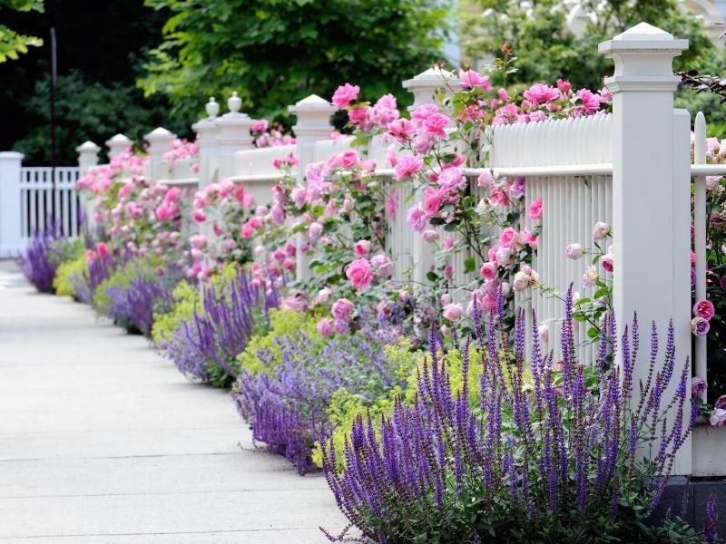 Классический деревянный забор с цветами — украшение дачи!