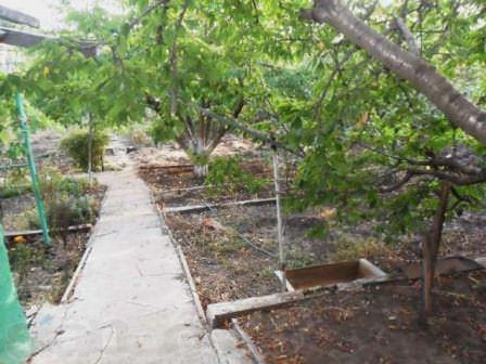 Пусть дача будет не столь современна, но в экологически чистом районе