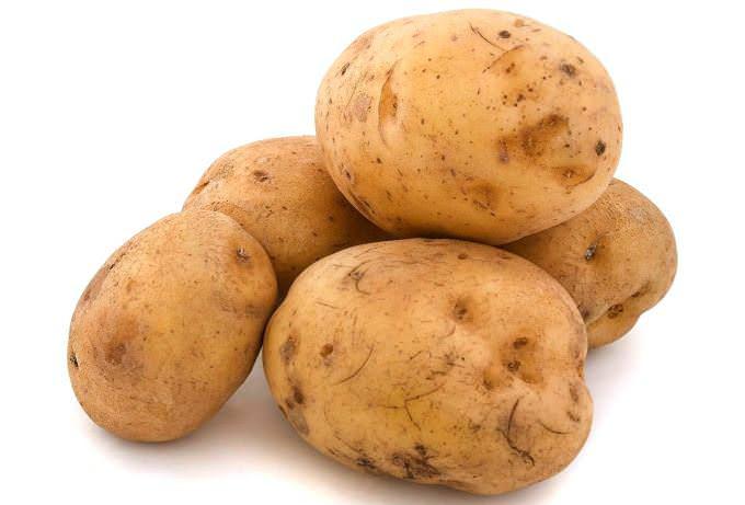 Картофель под названием «Баллада» относится к числу очень урожайных