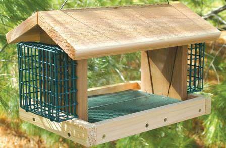 Кормушка для птиц из дерева — более прочная и надежная кормушка